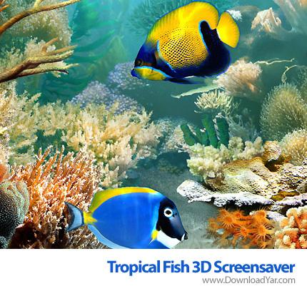 دانلود Tropical Fish 3D Screensaver 1.1 Build 6.9 - اسکرین سیوری از دنیای مجازی زیر آب